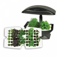 Garden Starter Tray