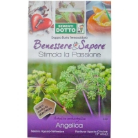 Angelica Seeds (Angelica archangelica) by Sementi Dotto