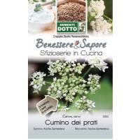 Caraway Seeds (Corum Carvi) by Sementi Seeds