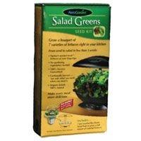 AeroGarden Seed Kit - Salad Greens