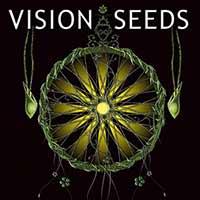 Vision Seeds Autoflower White Widow 5 seeds