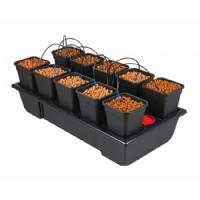 Wilma 10 Pot Hydroponic System (6L Pot)