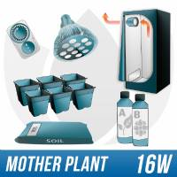 Indoor Growing Kit for Mother plants
