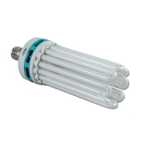 Compact FLUO 250W White - 6400°K - Vegetative