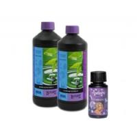 Atami Tri-Pack Kit (Growth-Flowering + Bloombastic)