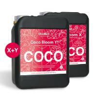 CellMax - Coco Bloom X+Y 2x10L