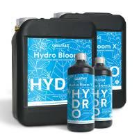 CellMax HYDRO Bloom X+Y