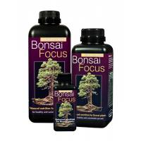 Bonsai Focus - Growth Technology