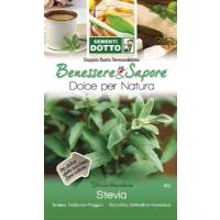 Stevia Seeds ( Stevia Rebaudiana) by Sementi Dotto
