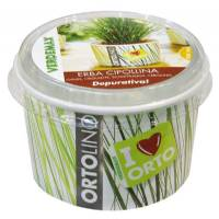 Cultivation Kit ORTOLINO Chives  by Verdemax