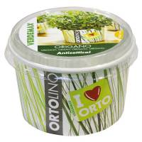 Cultivation Kit ORTOLINO Oregano by Verdemax