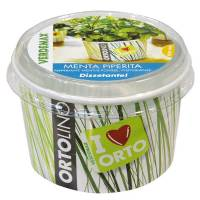 Cultivation Kit ORTOLINO Peppermint by Verdemax