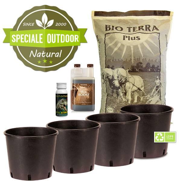 Autoflower Outdoor Grow Kit - 4 Pots
