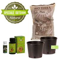 Autoflower Outdoor Grow Kit - 2 Pots