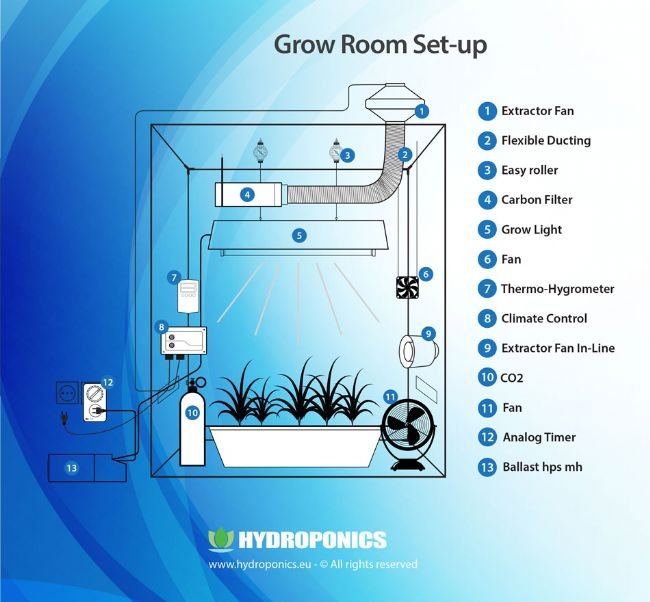Indoor Growing guide