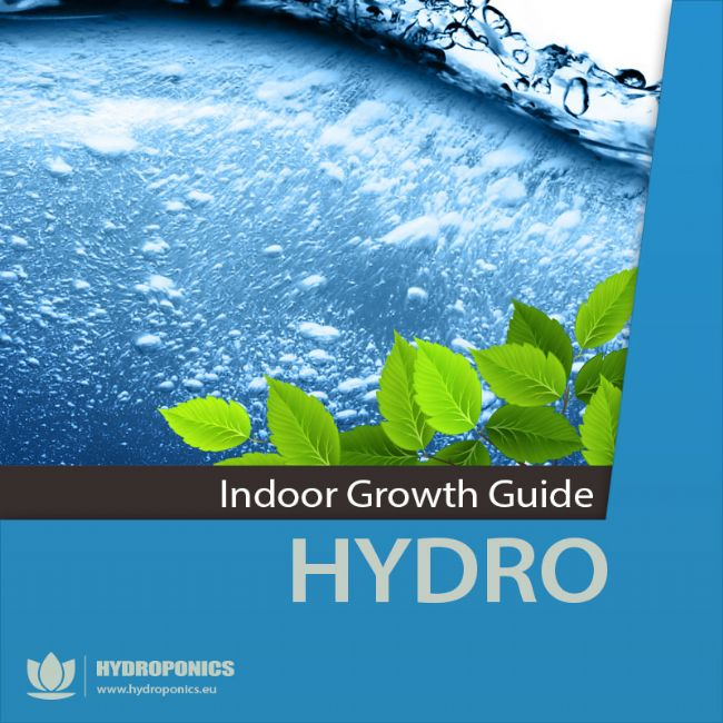 Indoor Growing Guide – Hydroponics | HOW TO GROW INDOOR USING HYDROPONICS SYSTEMS