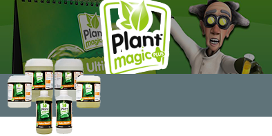 Plant Magic - Fertilizers