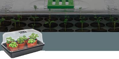 Propagators for germination