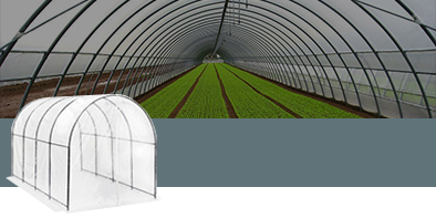 Tunnel Greenhouses for Agricultural