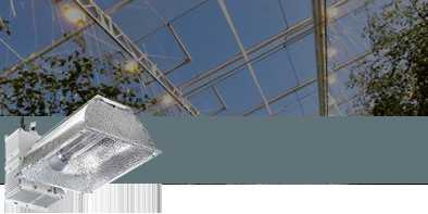 CMH Grow Lamps
