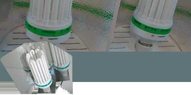 Compact Fluorescent Kit