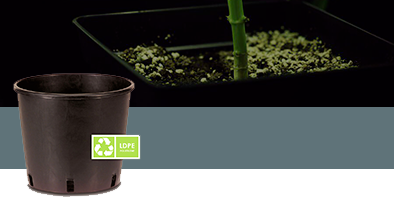 Pots Amp Containers For Indoor And Hydroponic Cultivation