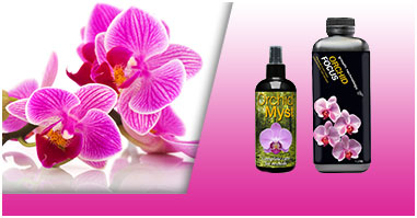 Growth Technology - Orchids
