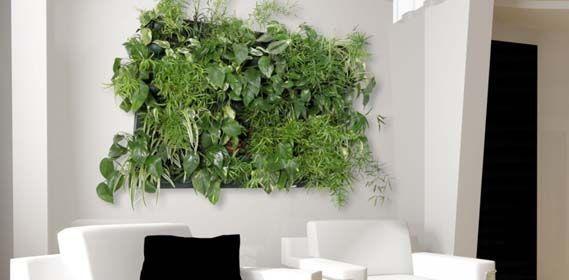 flowall. Black Bedroom Furniture Sets. Home Design Ideas