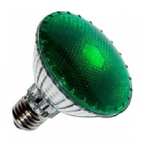 Agrolite Dark Night (Green Light) 100W