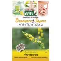 Agrimony Seeds (Agrimonia Eupatoria) by Sementi Dotto