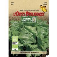 ICE QUEEN LETTUCE -  Bio Garden Seeds by Sementi Dotto