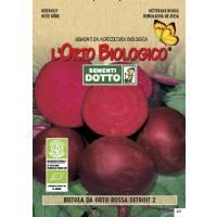 BEETROOT DETROIT 2 4gr - Bio Garden by Sementi Dotto