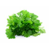 GIANT ITALIAN PARSLEY 4gr - Bio Garden Seeds by Sementi Dotto