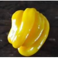 Westindian Yellow Habanero - 10 X Pepper Seeds