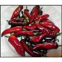 Tasmanian Black - 10 X Pepper Seeds