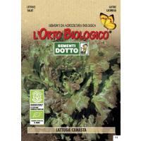 LETTUCE SATIVA 2,4gr  - Bio Garden Seeds by Sementi Dotto