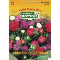 Dwarf Aster double flower - Gold Seeds by Sementi Dotto