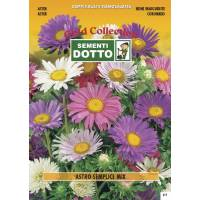 Aster Mix - Gold Seeds by Sementi Dotto