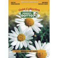 Big Daisy White - Gold Seeds by Sementi Dotto