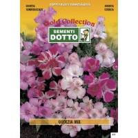 Godetia Flower Mix- Gold Seeds by Sementi Dotto