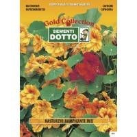 Vine Nasturtium (Tropaeolum majus) - Gold Seeds by Sementi Dotto 4.9gr