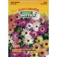Mesembryanthemum Mix - 1.3gr - Gold Seeds by Sementi Dotto