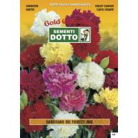 Carnation (Dianthus Caryophyllus) mix - Gold Seeds by Sementi Dotto 0.4gr