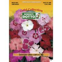 Indian Pinks (Dianthus chinensis) - Gold Seeds by Sementi Dotto 0.9gr