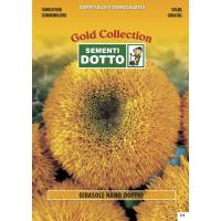 Double Dwarf Sunflower - Gold Seeds by Sementi Dotto