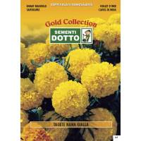 Dwarf Yellow Marigold - Gold Seeds by Sementi Dotto 1.8gr