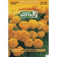 Dwarf Orange Marigold (Tagetes patula) - Gold Seeds by Sementi Dotto 1.8gr