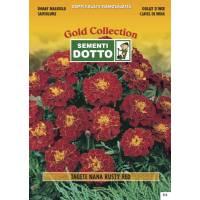 Dwarf Marigold (Tagetes patula) - Gold Seeds by Sementi Dotto 1.8gr