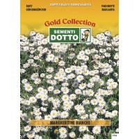 White Daisy (Bellis perennis) - Gold Seeds by Sementi Dotto