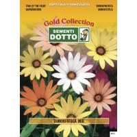 Dimorfoteca - Gold Seeds by Sementi Dotto